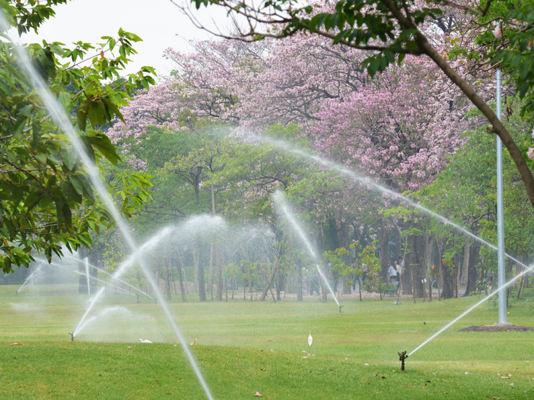 Who Offers Irrigation System Services Near Gainesville, GA?
